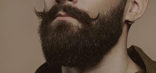 Atenția pentru barba